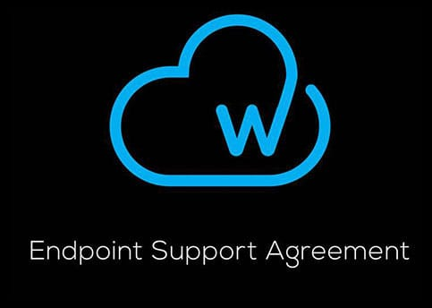 Welkin IT - Endpoint Support Agreement